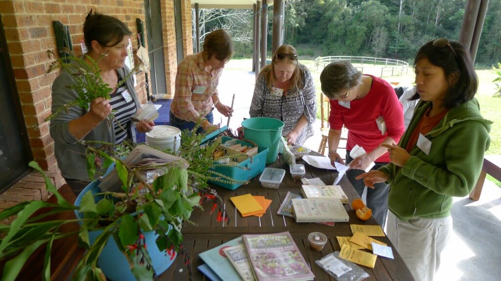 PCC Activity: Spring/Summer Seeds Sharing