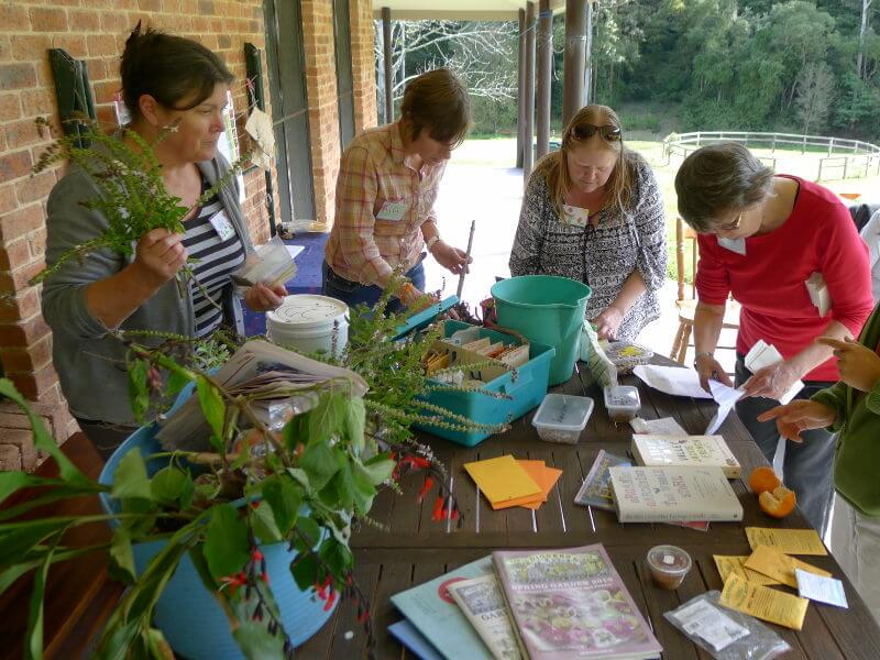 Seed saving workshop