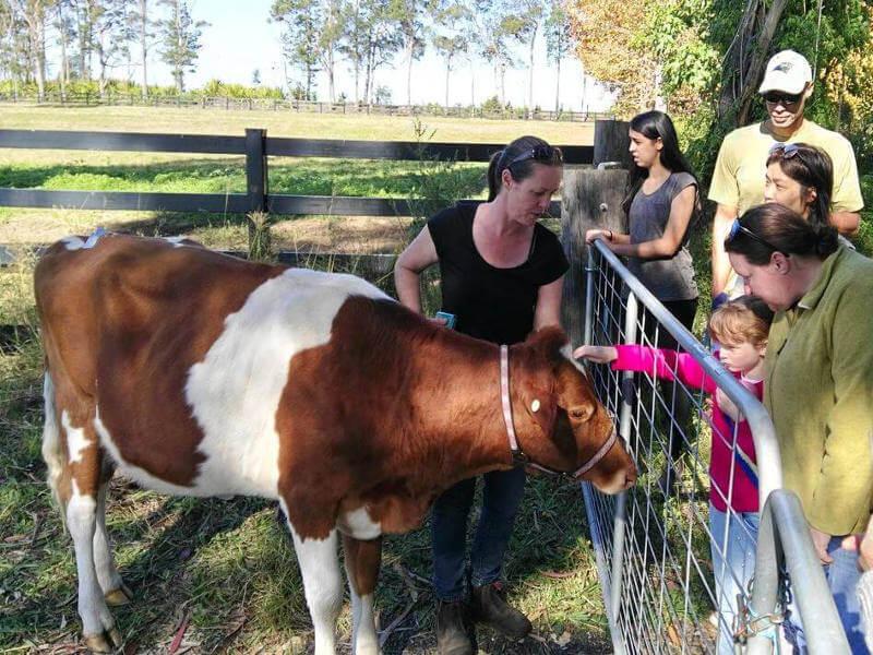 Regenerative Agriculture Tour of Grace Springs Farm
