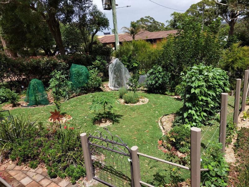 Garden tour at Linda's
